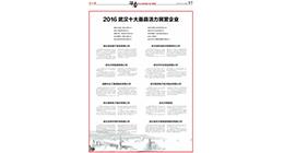 2016武汉十大最具活力民营企业