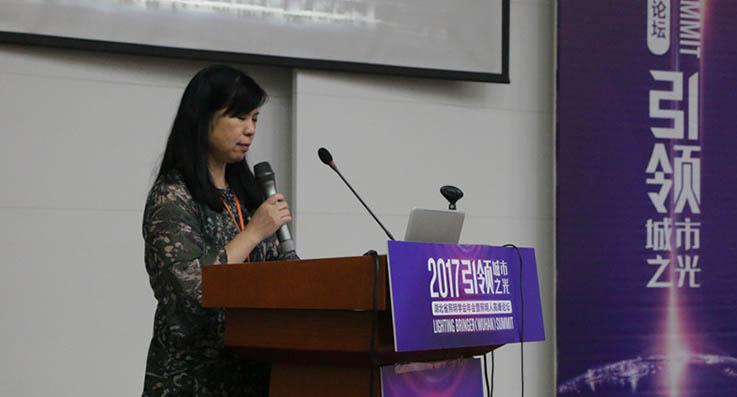 湖北省照明行业的困境和发展趋势 | 金东方高峰论坛演讲