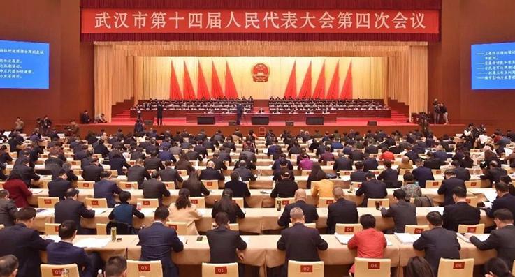 金东方董事长卢华出席武汉市人大会议